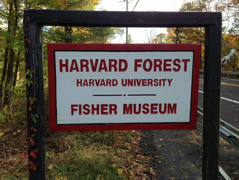 Harvard Forest Froling FHG