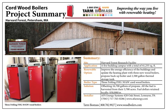 tarm Biomass project Summary 5