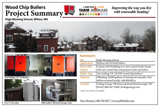tarm Biomass Project Summary 9